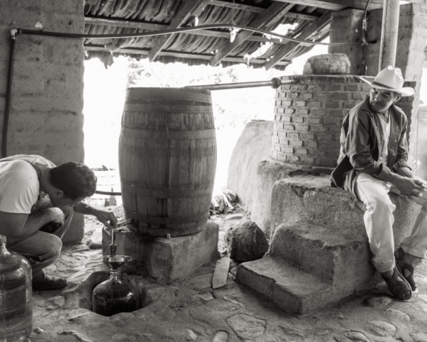 Australian Raicillero Rio Chenery checking the heads of the first distillation of Estancia Raicilla