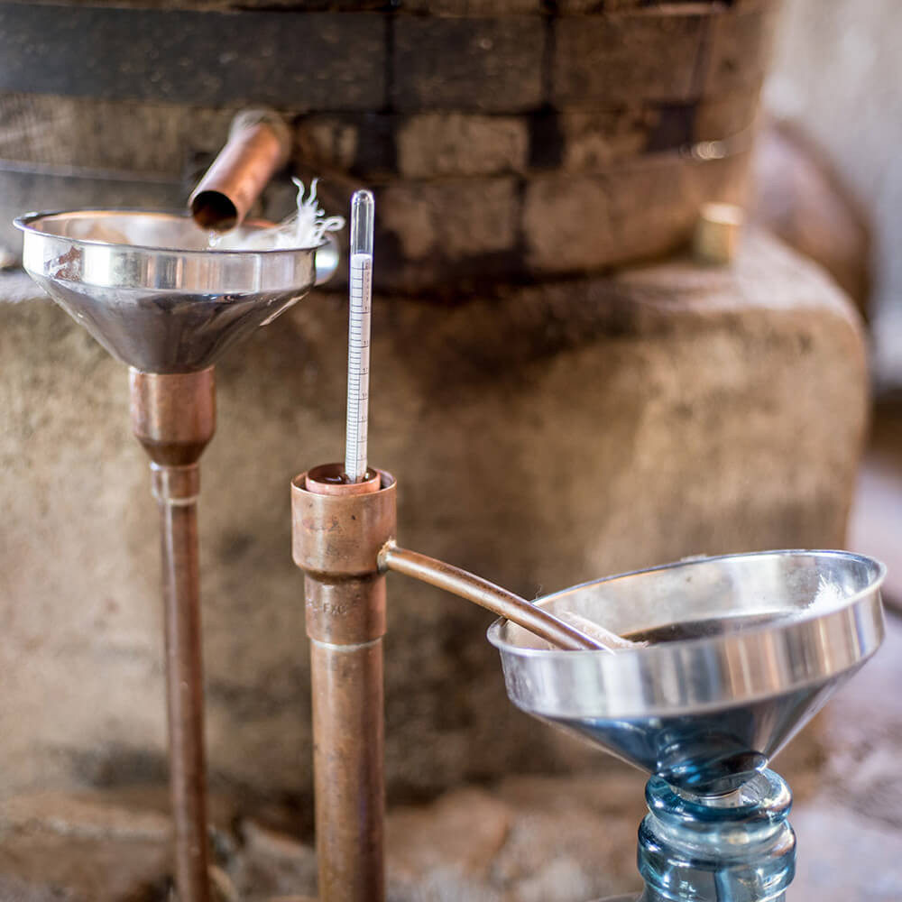 Raicilla Distillery