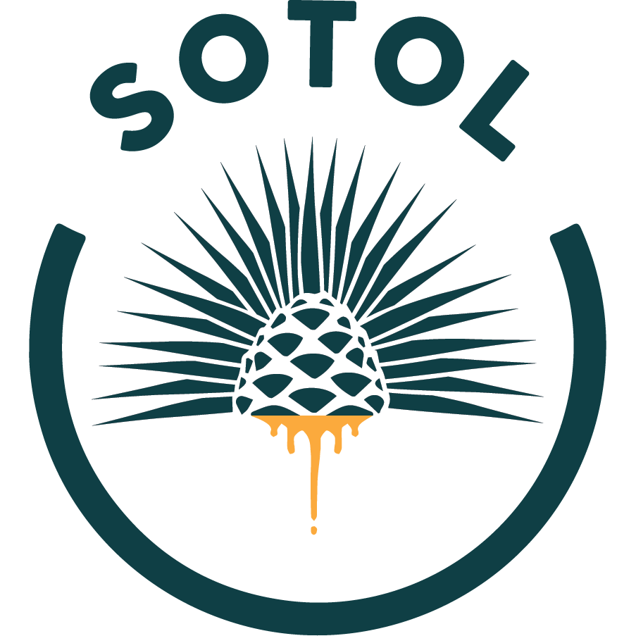 Sotol - Agave School